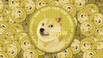 Doge coin - To the moon? Or is this just another Apollo?